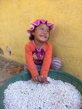 Cute little girl playing in the beans!