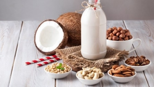 Plant-based-products-can-t-use-dairy-names-European-Court-of-Justice_wrbm_large.jpg